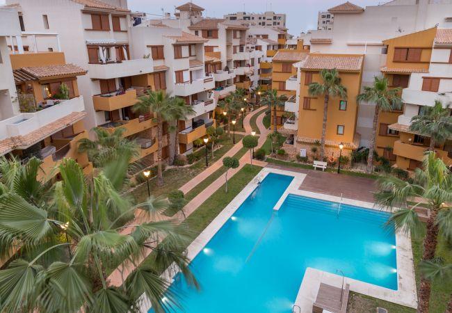 Appartement de vacances Fidalsa Home Beach Holidays (2599641), Torrevieja, Costa Blanca, Valence, Espagne, image 9