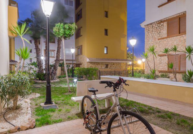Appartement de vacances Fidalsa Home Beach Holidays (2599641), Torrevieja, Costa Blanca, Valence, Espagne, image 12