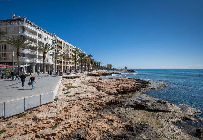 Appartement de vacances Fidalsa Home Beach Holidays (2599641), Torrevieja, Costa Blanca, Valence, Espagne, image 27