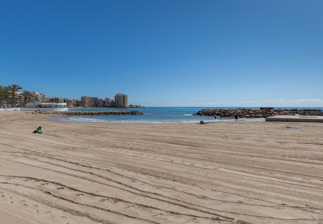 Appartement de vacances Fidalsa Home Beach Holidays (2599641), Torrevieja, Costa Blanca, Valence, Espagne, image 15