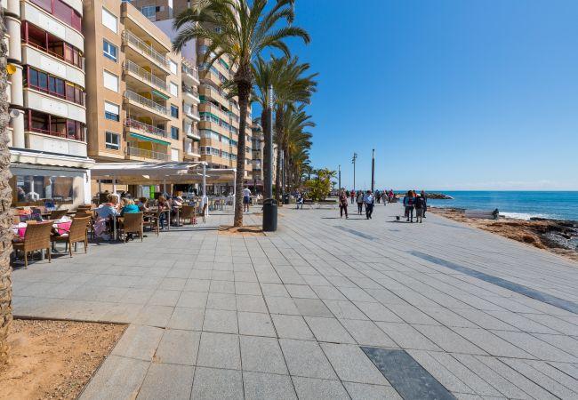 Appartement de vacances Fidalsa Home Beach Holidays (2599641), Torrevieja, Costa Blanca, Valence, Espagne, image 31