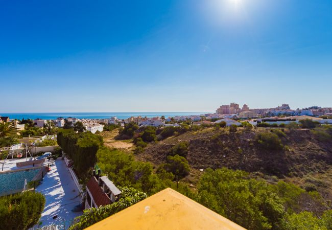 Appartement de vacances ID46 (2602615), Torrevieja, Costa Blanca, Valence, Espagne, image 20