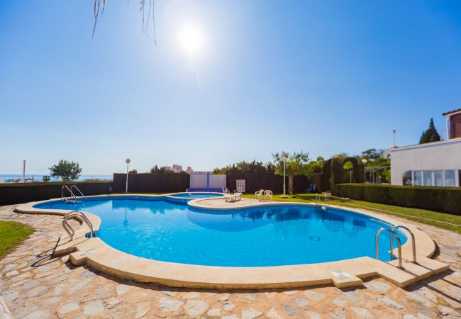 Appartement de vacances ID46 (2602615), Torrevieja, Costa Blanca, Valence, Espagne, image 23