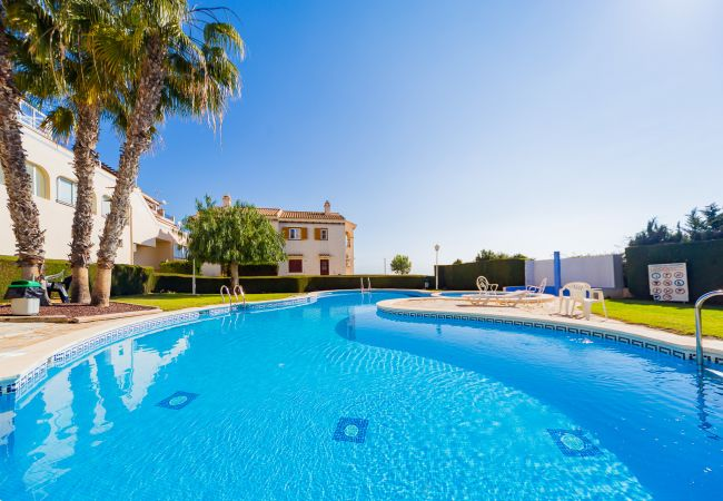Appartement de vacances ID46 (2602615), Torrevieja, Costa Blanca, Valence, Espagne, image 28