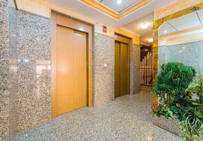 Appartement de vacances ID119 (2602616), Torrevieja, Costa Blanca, Valence, Espagne, image 25