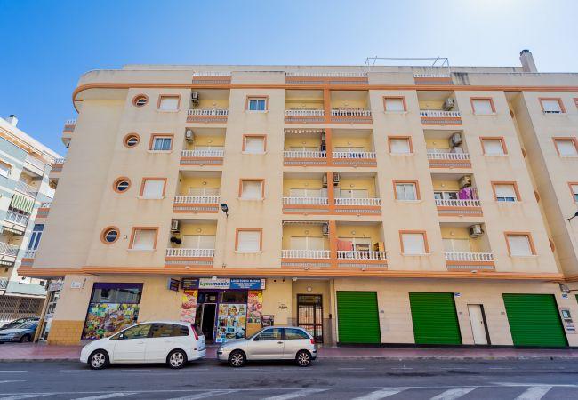 Appartement de vacances ID119 (2602616), Torrevieja, Costa Blanca, Valence, Espagne, image 28