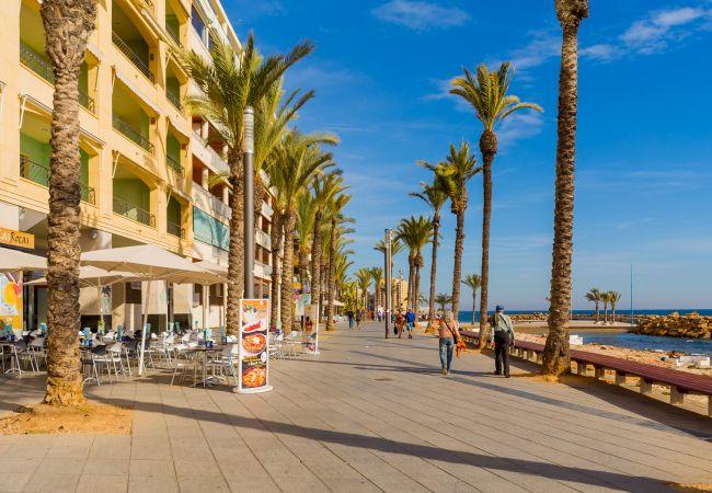 Appartement de vacances ID7 (2602617), Torrevieja, Costa Blanca, Valence, Espagne, image 23