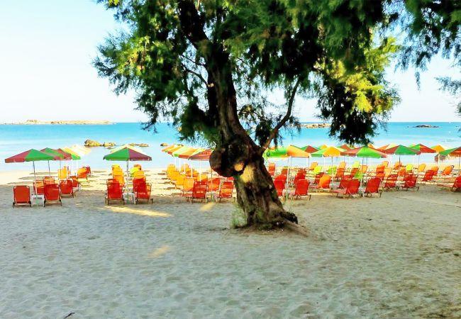 Holiday apartment Mare Civitas Duo (2650635), Chania, Crete North Coast, Crete, Greece, picture 22