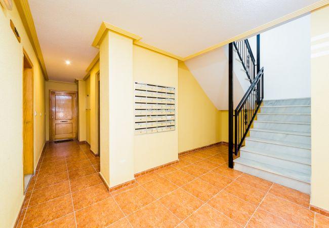 Appartement de vacances ID131 (2610951), Torrevieja, Costa Blanca, Valence, Espagne, image 18