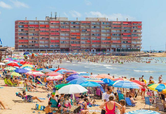 Appartement de vacances ID131 (2610951), Torrevieja, Costa Blanca, Valence, Espagne, image 24