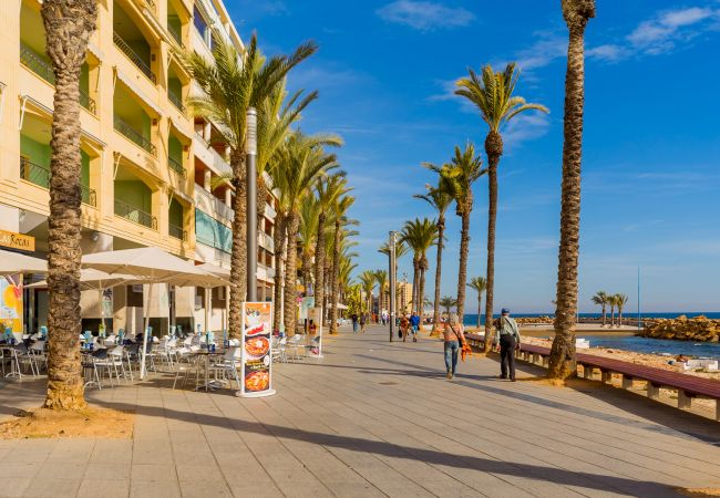 Appartement de vacances ID342 (2615002), Torrevieja, Costa Blanca, Valence, Espagne, image 17