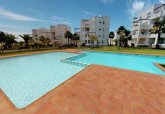 Estiarte 287958-A Murcia Holiday Rentals Property   Murcia