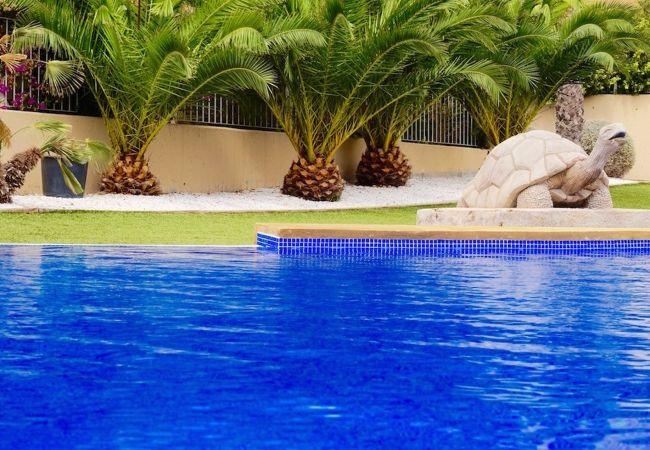 Appartement de vacances Agueda 287967-A Murcia Holiday Rentals Property (2670387), Baños y Mendigo, , Murcie, Espagne, image 2