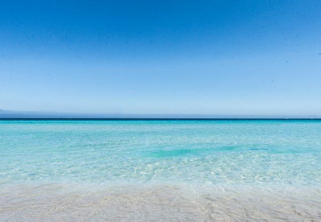 Appartement de vacances Casa con terrazza sul mare all'Addaura (2618846), Palermo, Palermo, Sicile, Italie, image 28