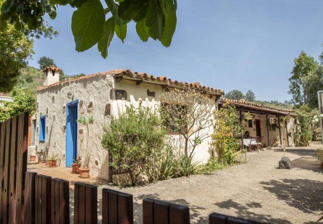 Maison de vacances Casa el Laurel mit Whirlpool von Lightbooking (2714905), San Fernando, Grande Canarie, Iles Canaries, Espagne, image 2