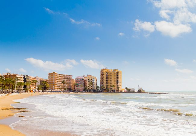 Appartement de vacances ID15 (2628774), Torrevieja, Costa Blanca, Valence, Espagne, image 22