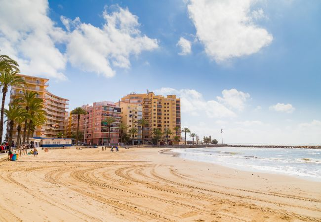 Appartement de vacances ID15 (2628774), Torrevieja, Costa Blanca, Valence, Espagne, image 21