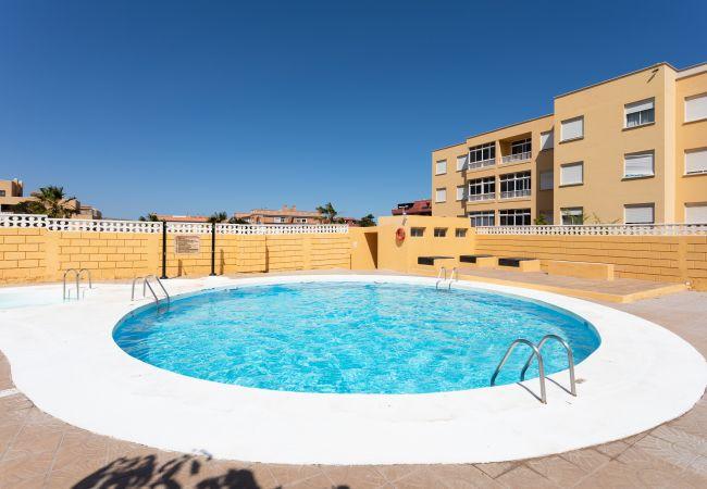 Appartement de vacances Lagos de Miramar (2627724), El Medano, Ténérife, Iles Canaries, Espagne, image 23