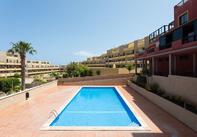 Appartement de vacances La Jaquita (2627725), El Medano, Ténérife, Iles Canaries, Espagne, image 20