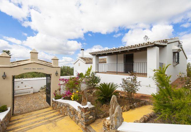 Ferienhaus Villa El Bonete Constantina Canovas (CS) (2640879), Constantina, Sevilla, Andalusien, Spanien, Bild 4