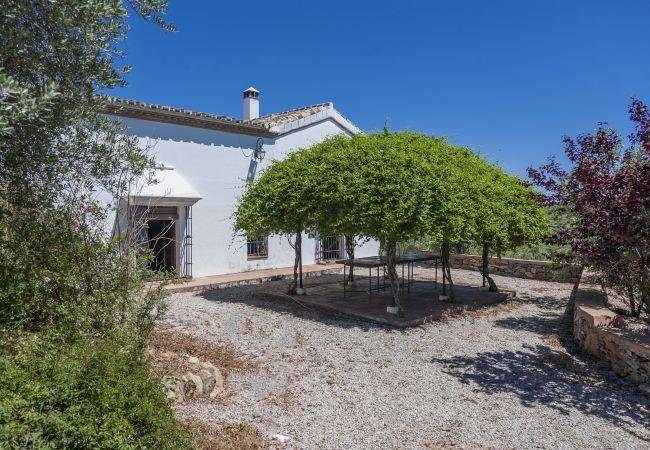 Ferienhaus Villa El Bonete Constantina Canovas (CS) (2640879), Constantina, Sevilla, Andalusien, Spanien, Bild 31