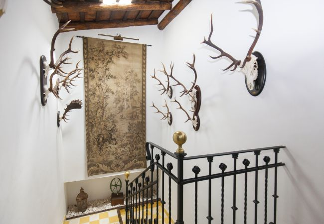 Ferienhaus Villa El Bonete Constantina Canovas (CS) (2640879), Constantina, Sevilla, Andalusien, Spanien, Bild 35