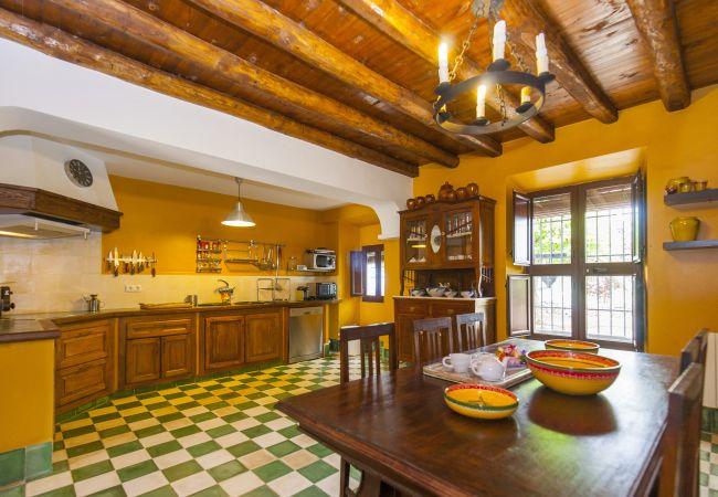 Ferienhaus Villa El Bonete Constantina Canovas (CS) (2640879), Constantina, Sevilla, Andalusien, Spanien, Bild 12