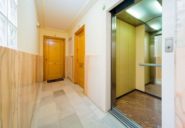 Appartement de vacances ID138 (2632307), Torrevieja, Costa Blanca, Valence, Espagne, image 20