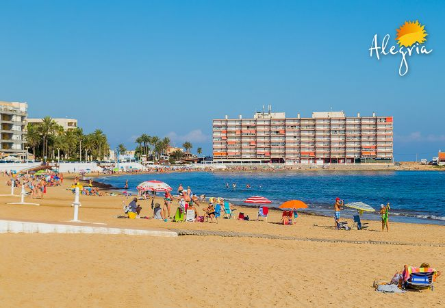 Appartement de vacances ID138 (2632307), Torrevieja, Costa Blanca, Valence, Espagne, image 26