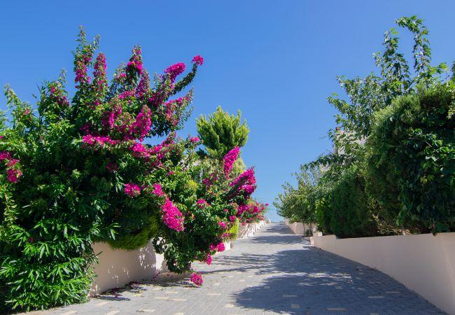 Holiday house Selini 7 (2678685), Spilia, Crete North Coast, Crete, Greece, picture 8
