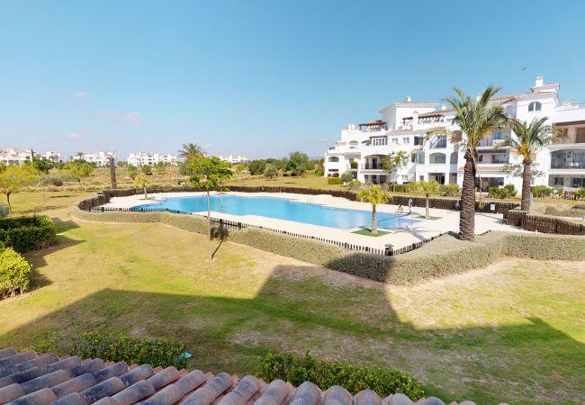Indico 312981-A Murcia Holiday Rentals Property   Murcia