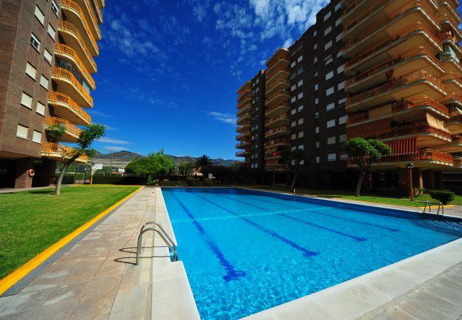Apartamento Benipal 6/8 Personas  in Spanien